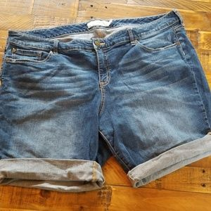 Torrid Denim Bermuda Jean Shorts Size 24